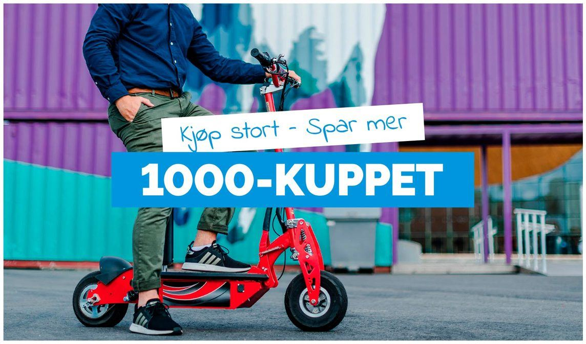 https://auksjon.netthandelen.no/products/1000-kuppet